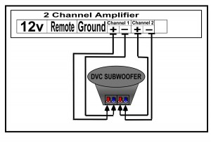 DVC to 2 Channel Amplifier